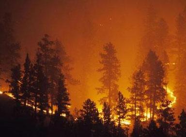 美国科罗拉多州至少2000户居民撤离