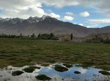 新疆喀什地区