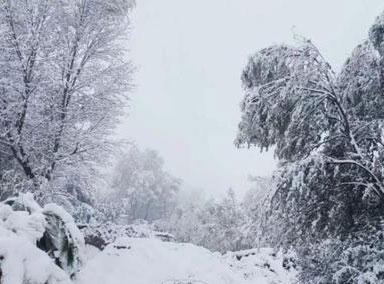 甘肃多地迎降雪