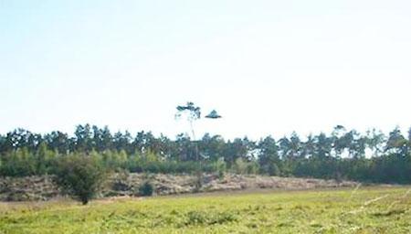 波兰男子拍到UFO清晰照