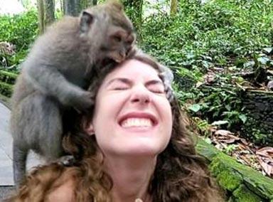 """如何对付峨眉山的""""强盗""""猴子?"""