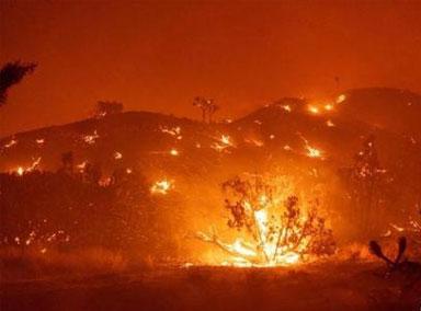 """美国加州""""酒乡""""遭遇大火"""